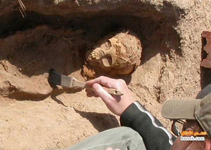 الفرعونية hmseh-23c2fe5fd5.jpg
