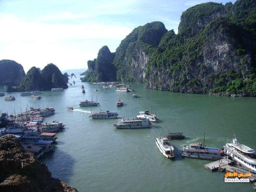 فيتنام. hmseh-941c7896a2.jpg
