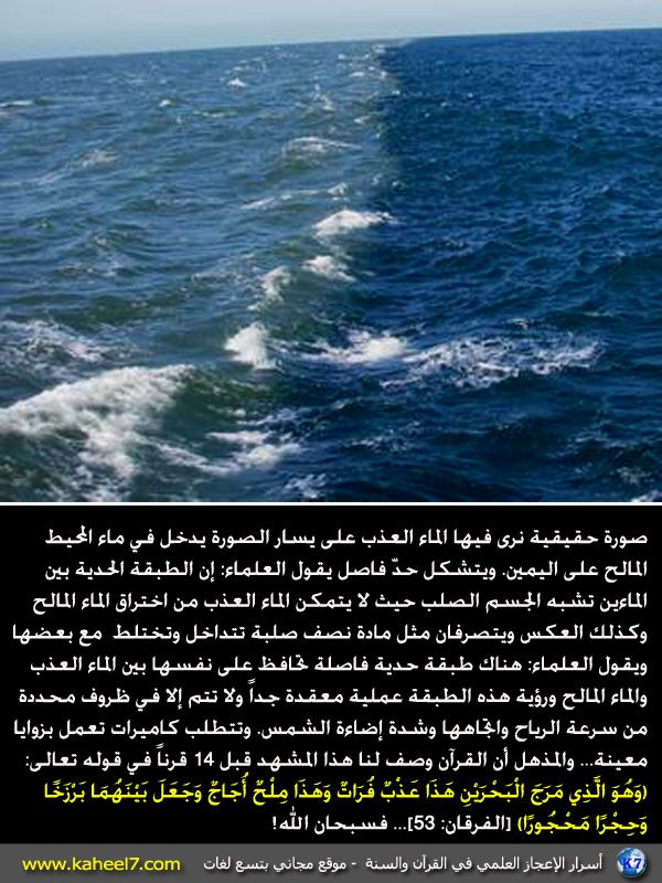 البحرين hmseh-a7ad3c5d73.jpg