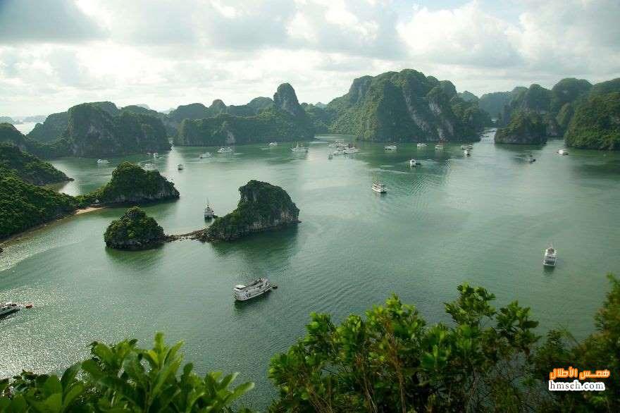 فيتنام. hmseh-ca6fab1890.jpg